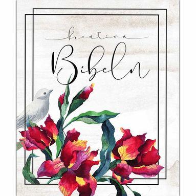 bokomslag Kreativ Bibel i vit hårdpärm
