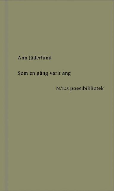 bokomslag Som en gång varit äng