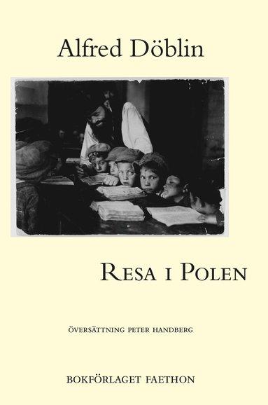 bokomslag Resa i Polen