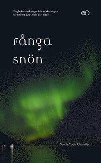 bokomslag Fånga snön : dagboksanteckningar från mörka dagar för att hitta ljuspunkter och glädje