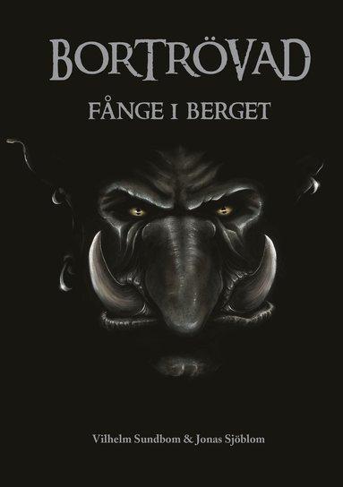 bokomslag Fånge i berget