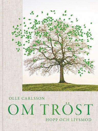 bokomslag Om tröst, hopp och livsmod