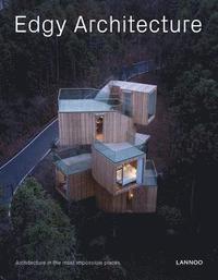 bokomslag Edgy Architecture