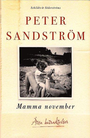 bokomslag Mamma november : åtta betraktelser