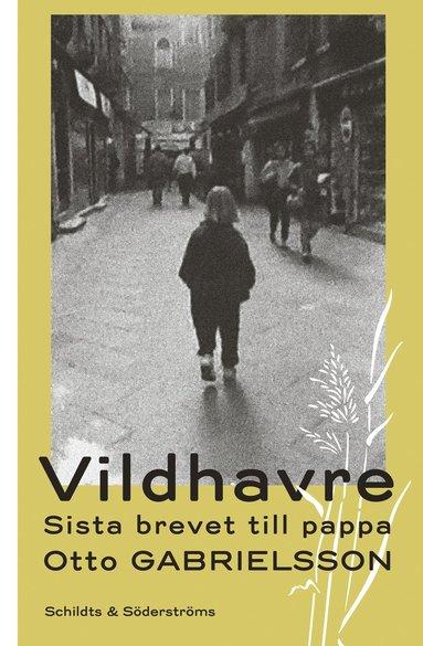 bokomslag Vildhavre : sista brevet till pappa