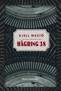 bokomslag Hägring 38