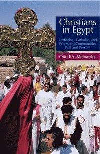 bokomslag Christians in Egypt