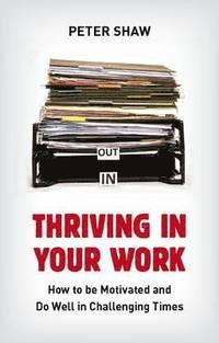 bokomslag Thriving in Your Work